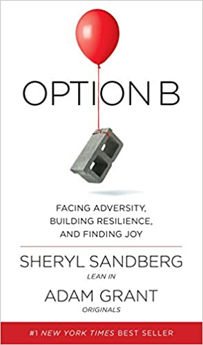 Facing Adversity, Building Resilience, and Finding Joy Audio Book