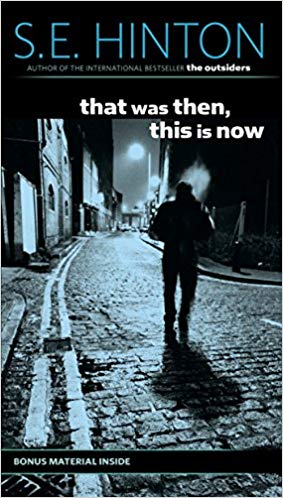 That Was Then, This Is Now Audiobook Online